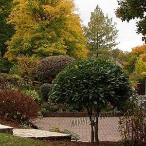 amenagement jardins blois